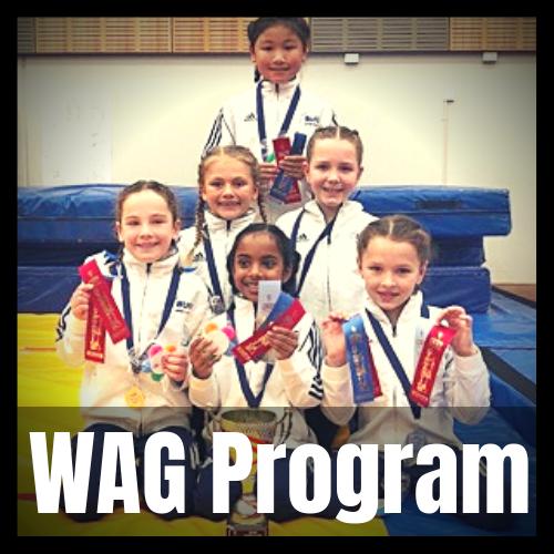 Wag Program